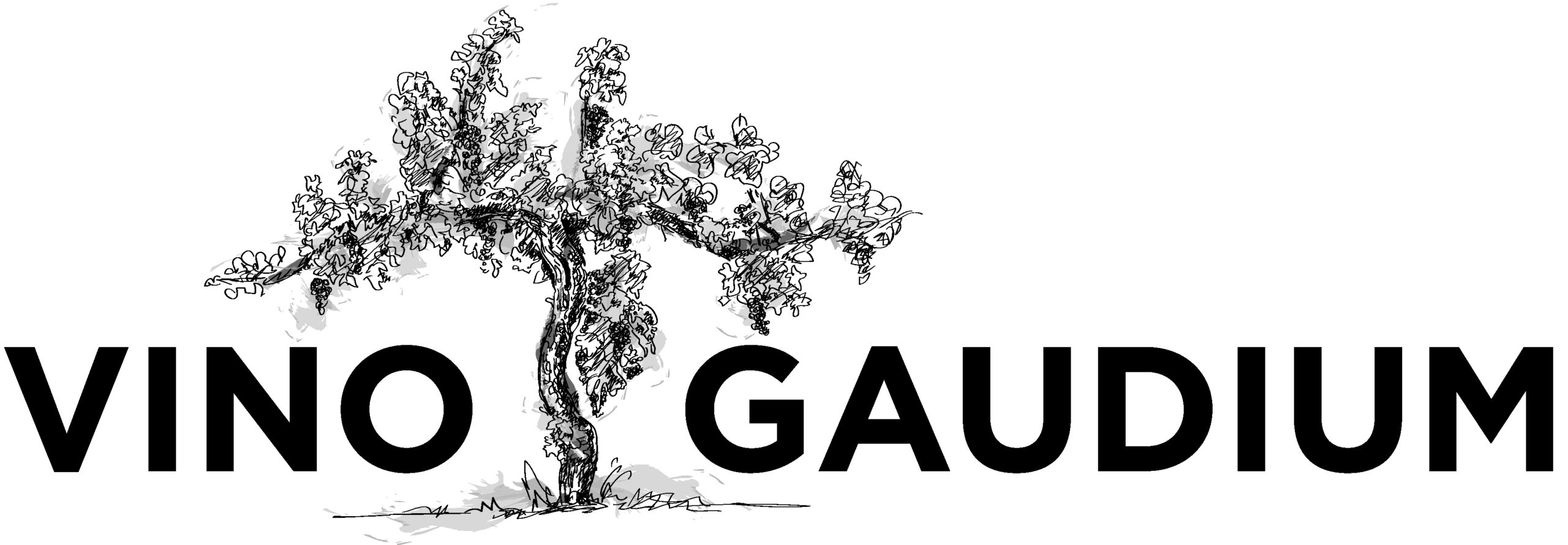 Vino Gaudium